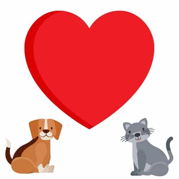compounded-pet-medications-heart-health-pure-life-pharmacy-foley-alabama
